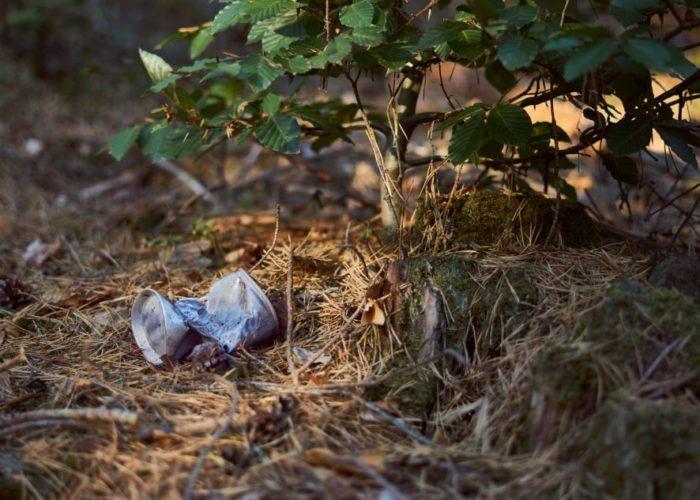 #PickUp5 Śmieci w lesie